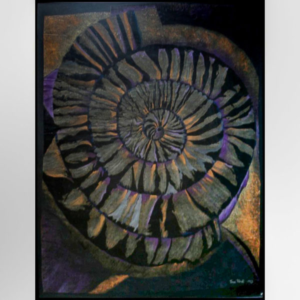 Ammonite FOSSIL SERIES