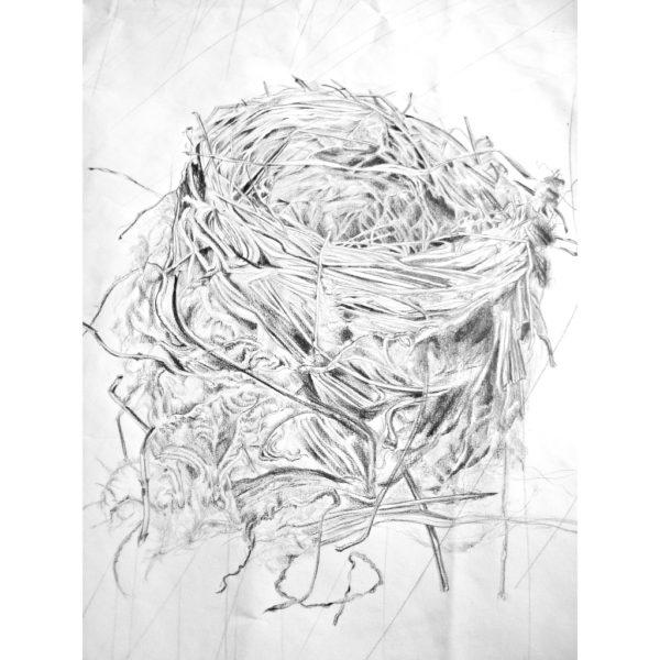 Found Nest (detail 2)