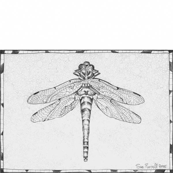 Glandernol Dragonfly
