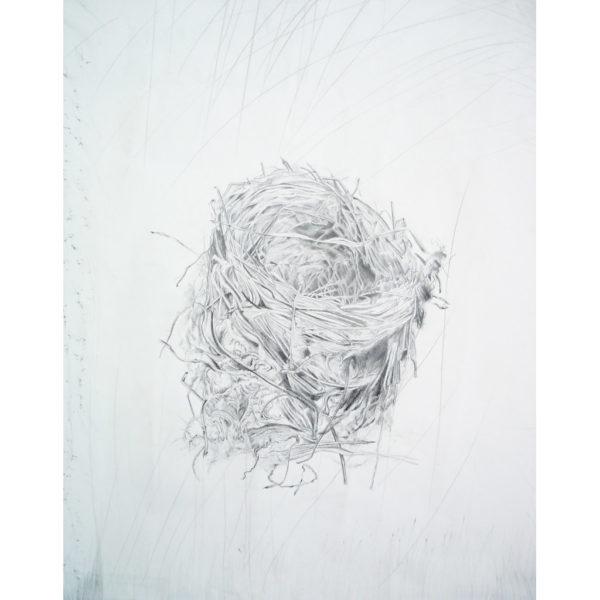 Found Nest (detail 3)