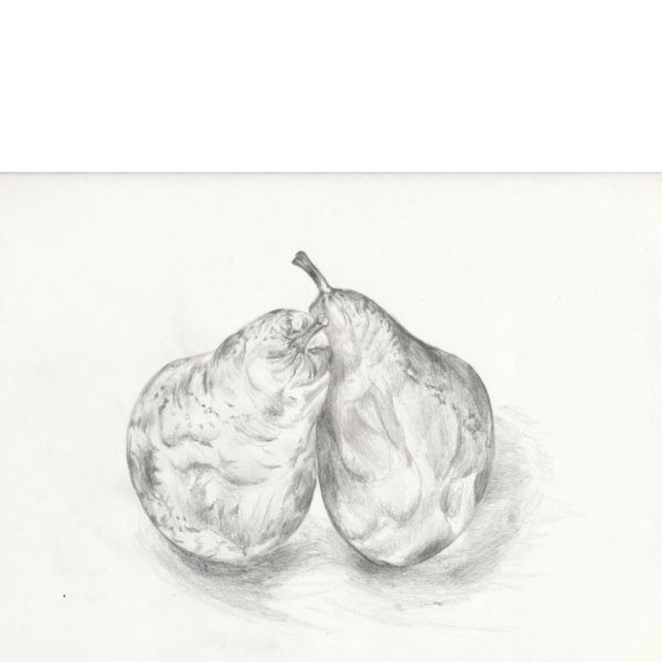 Pair of Pears # 1
